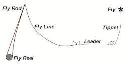 Basic Fly Setup
